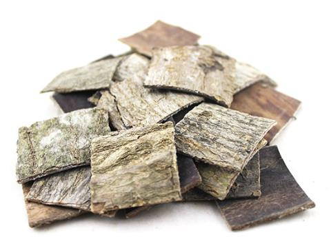 7大类256科 1104种广泛分布 夷陵区木本中药材种植突破16万亩