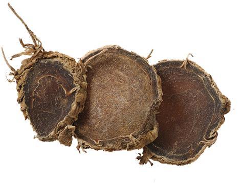 玉林市场莪术正常购销 行情趋于平稳
