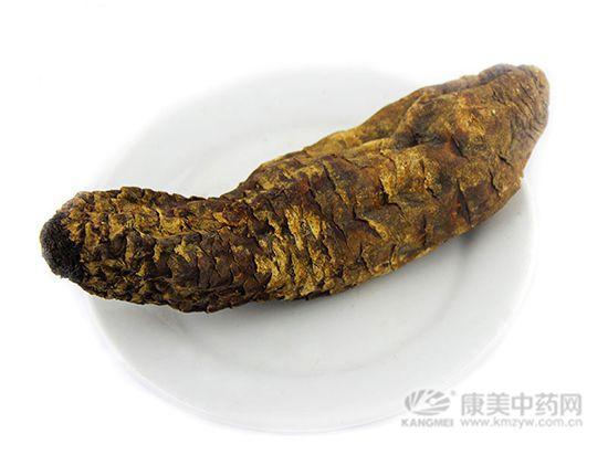 锁阳与肉苁蓉有什么区别?