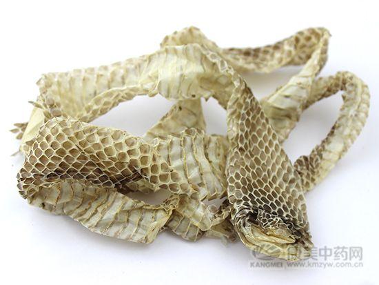蛇蜕的鉴别方法