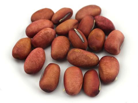 安国市场刀豆价格稳定
